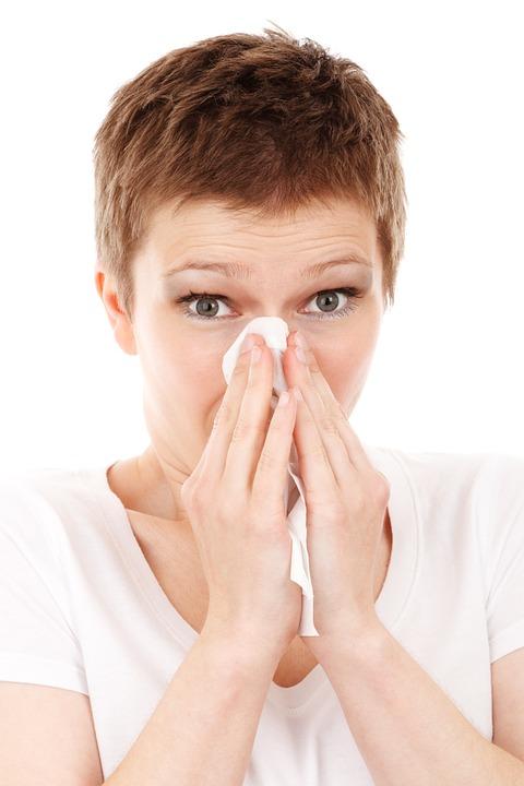 Les types de sinus paranasaux que nous avons